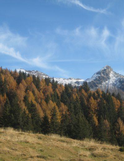 Trentino (15)