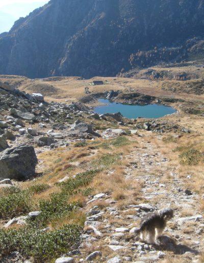 Trentino (16)