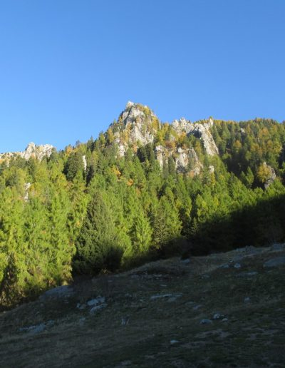 Trentino (17)