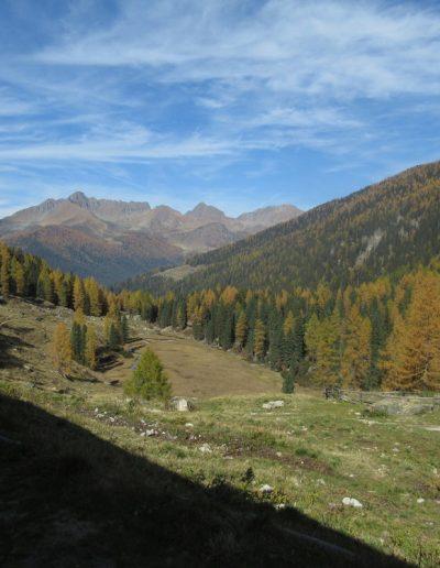 Trentino (22)
