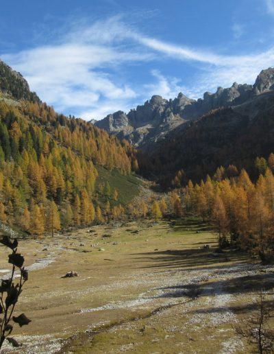 Trentino (23)