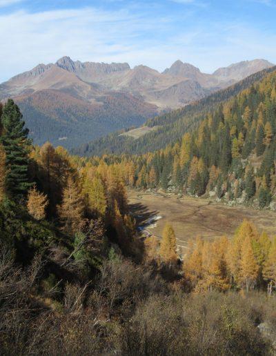 Trentino (25)