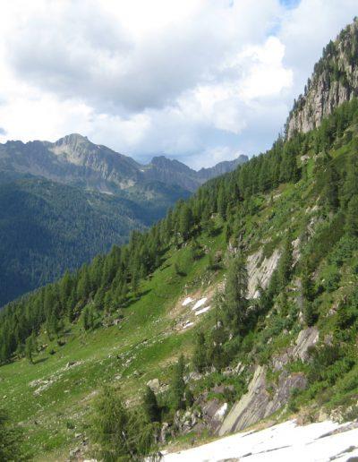 Trentino (41)
