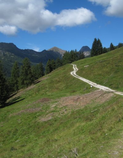 Trentino (43)