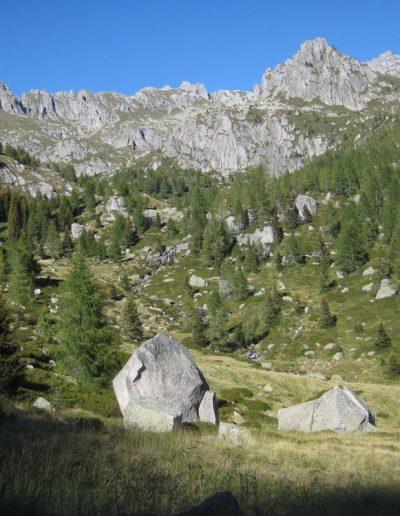 Trentino (45)