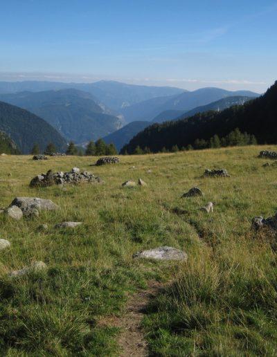 Trentino (46)